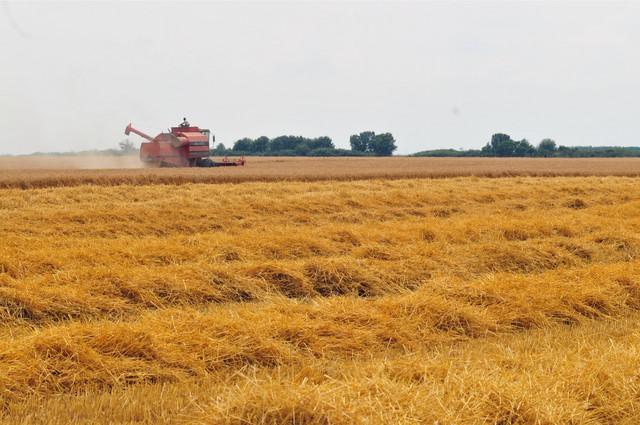 U Srbiji postoji oko 200.000 hektara državnih oranica koje se ne obrađuju