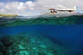 austrlijski veliki koralni greben03_foto reuters