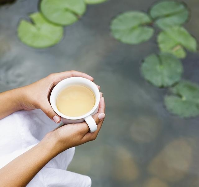 11 legjobb zsírégető tea