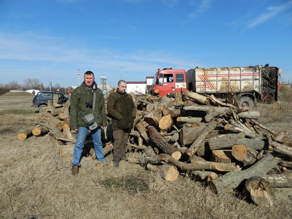 Zaplenjena drva od šumokradica