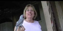 Papuga uratowała ludzi z pożaru