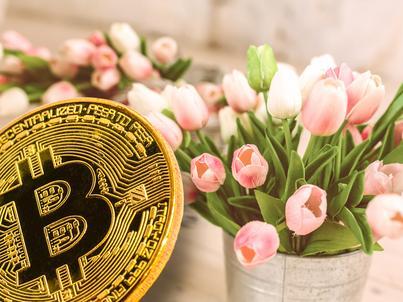 Szef KNF ostrzega przed ryzykiem ws. wirtualnych walut