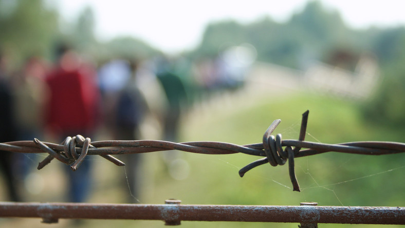imigranci, granica