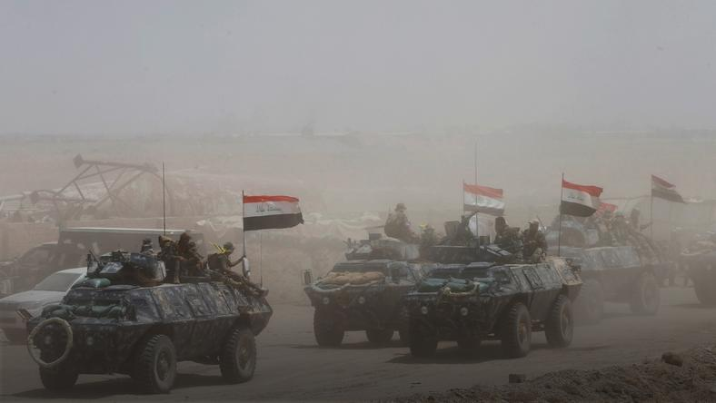 Iraqi federal police with Shi'ite fighters advance towards Falluja
