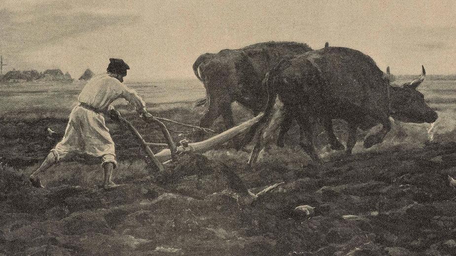 Orka wołami Obraz Józefa Chełmońskiego