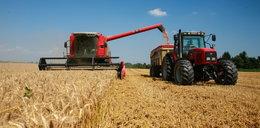 Polscy rolnicy zadłuża się w zastraszającym tempie!