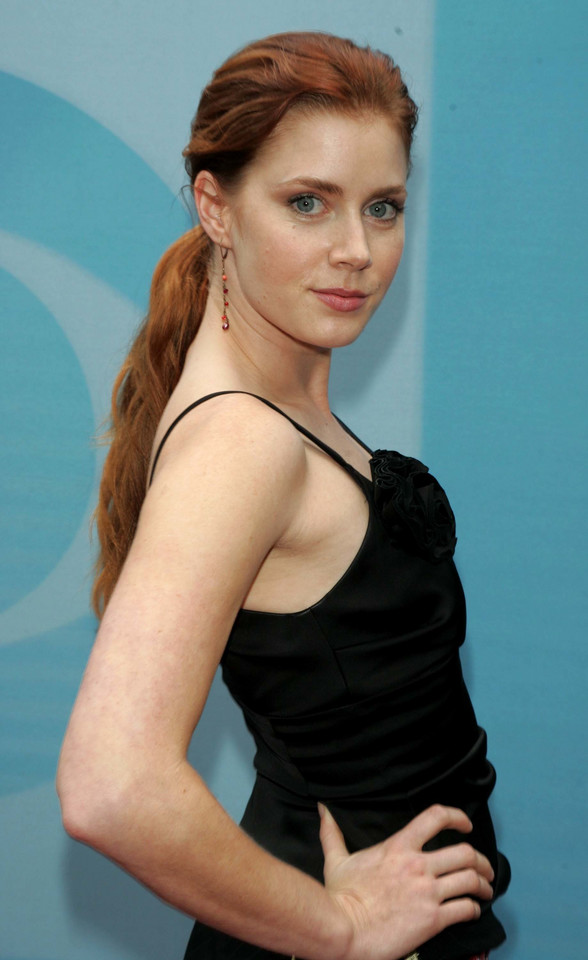 Amy Adams w 2004 roku
