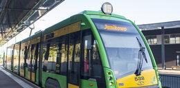 Zamówią nawet 30 nowych tramwajów! Czy będą to kolejne Tramino?