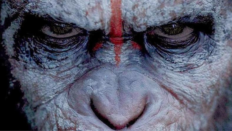"""Akcja """"Ewolucji Planety Małp"""" toczy się dziesięć lat po wydarzeniach z części pierwszej. Ludzkość została zdziesiątkowana przez tajemniczy wirus, teraz gatunkiem dominującym na Ziemi są inteligentne i zdolne do stworzenia własnej cywilizacji człekokształtne"""