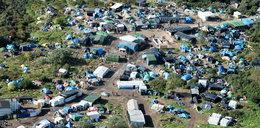 """Obozowisko w Calais to już prawdziwa """"dżungla"""""""