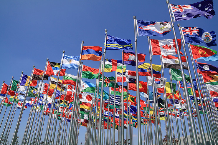STO, Svetska trgovinska organizacija