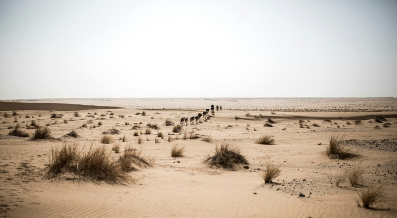 Myth of the Sahara remains a lure for France today