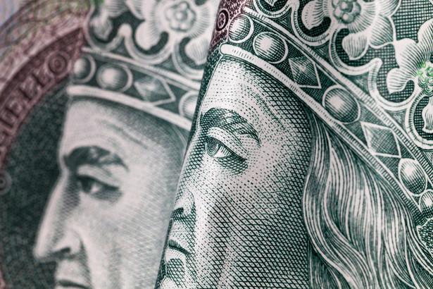 NBP, podobnie jak banki centralne Czech i Węgier, jest sceptyczny co do ewentualnych korzyści z członkostwa w strefie euro