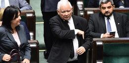 """Głosowanie ws. """"piątki dla zwierząt"""". Ustawa uchwalona, ale część posłów postawiła się Kaczyńskiemu"""