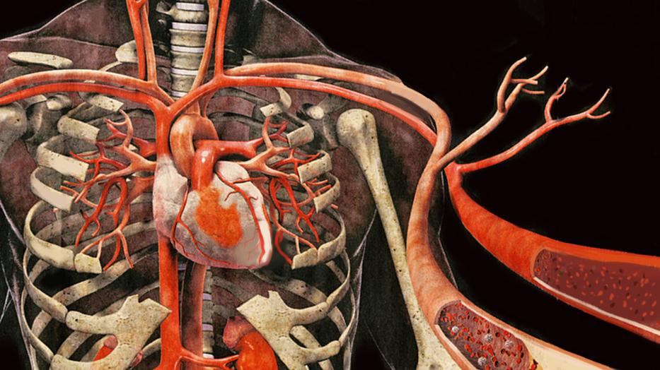 Amit a vérnyomásról tudni kell - Egészségtüköeletrevalogyerek.hu