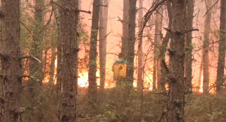 Makedonija  požar Prespa