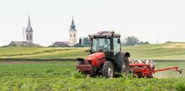 Tak koronawirus wpływa na polskie rolnictwo. Jest silna presja cenowa