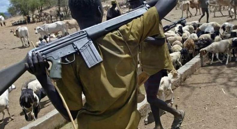 Herdsmen attack passengers on Ife-Ibadan highway, kill 1/Illustration (The Will)