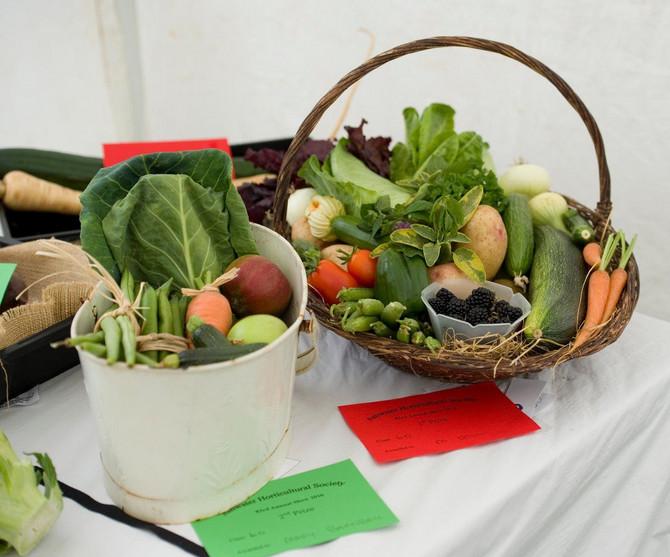 Brokoli, prokelj, spanać, grašak i kelj pomažu u mršavljenju