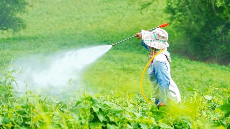 Opryskiwanie roślin uprawnych pestycydami