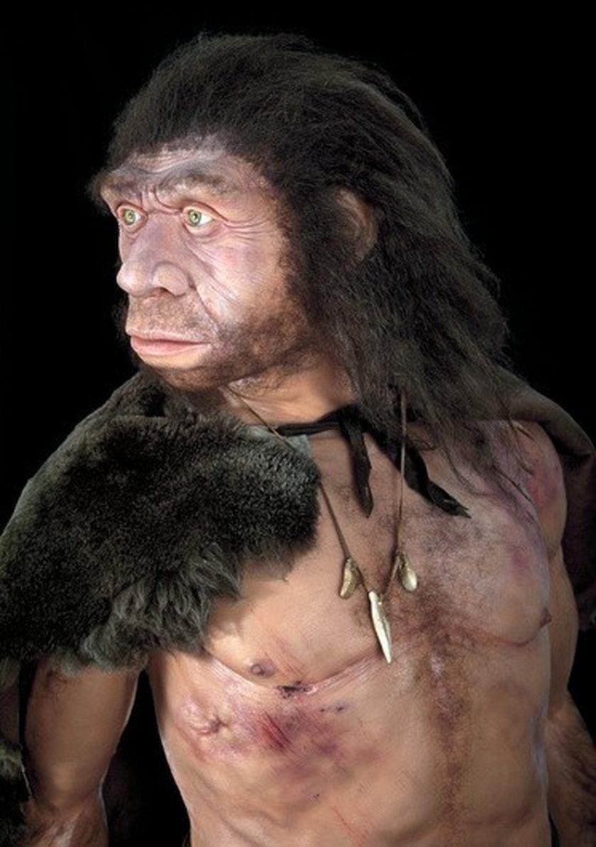 Nóż sprzed 100 tysięcy lat