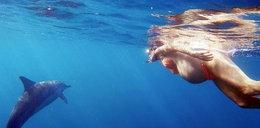 Urodzi w oceanie, a jej położną będzie delfin