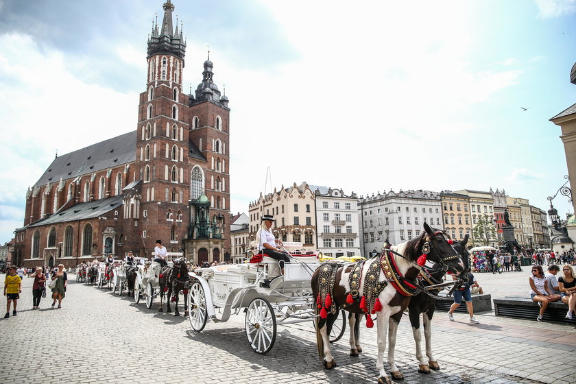 Miasto królów Polski