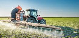 Polscy farmerzy chcą stosować rakotwórczy środek. Dla zysku