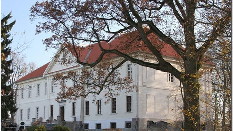 Nakomiady, pałac