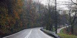 Będą nowe trasy szybkiego ruchu -  Zwierzyniecka i Pychowicka