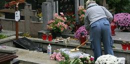 Wybierasz się posprzątać grób bliskiej osoby? Zastosuj się do tych kroków, a ułatwisz sobie zadanie