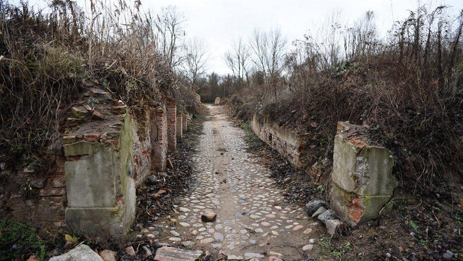 Kostrzyn nad Odrą - historia, fortyfikacje, ruiny