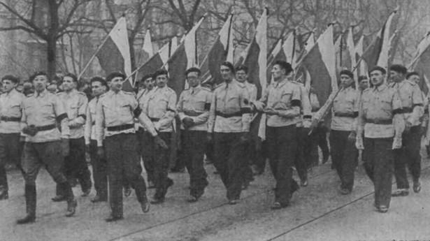 Członkowie Stronnictwa Narodowego podczas pogrzebu Romana Dmowskiego. Warszawa 1939 r. (Domena Publiczna)
