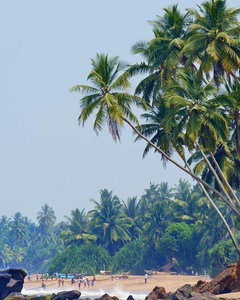Pięć powodów, dla których warto odwiedzić Sri Lankę w listopadzie