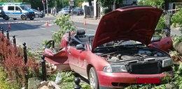 Przerażające sceny w Żywcu. Potężne drzewo runęło na jezdnię i przygniotło przejeżdżające auto. Nagranie szokuje