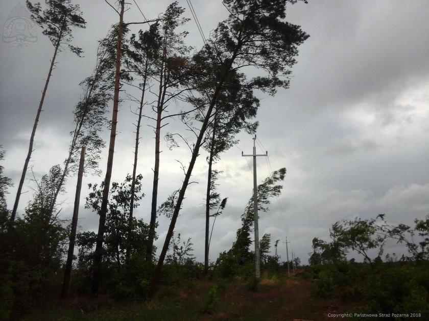 Prognoza pogody: burze, gradobicia i wiatr w całym kraju