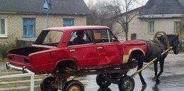 Szok! Tak się żyje na rosyjskiej wsi!