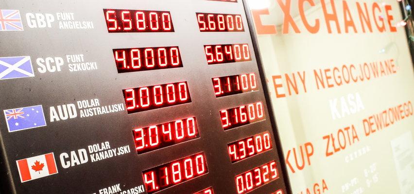 Opinia eksperta: Załamanie walutowe będzie ceną za łamanie zasad demokracji