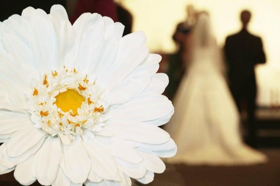 U Beogradu su prošlog meseca u bračnu zajednicu stupila 664 para