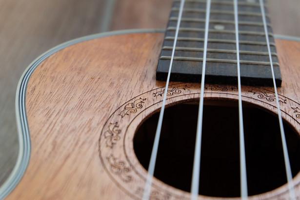Od piątku na poznańskich ulicach, w parkach i na dziedzińcach odbywać się będą plenerowe koncerty ukulele. Oficjalną inauguracją festiwalu będzie natomiast hejnał z ratuszowej wieży wykonany na żywo przez Pierwszą Poznańską Niesymfoniczną Orkiestrę Ukulele.