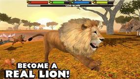 Ultimate Lion Simulator - jak to jest być królem zwierząt?