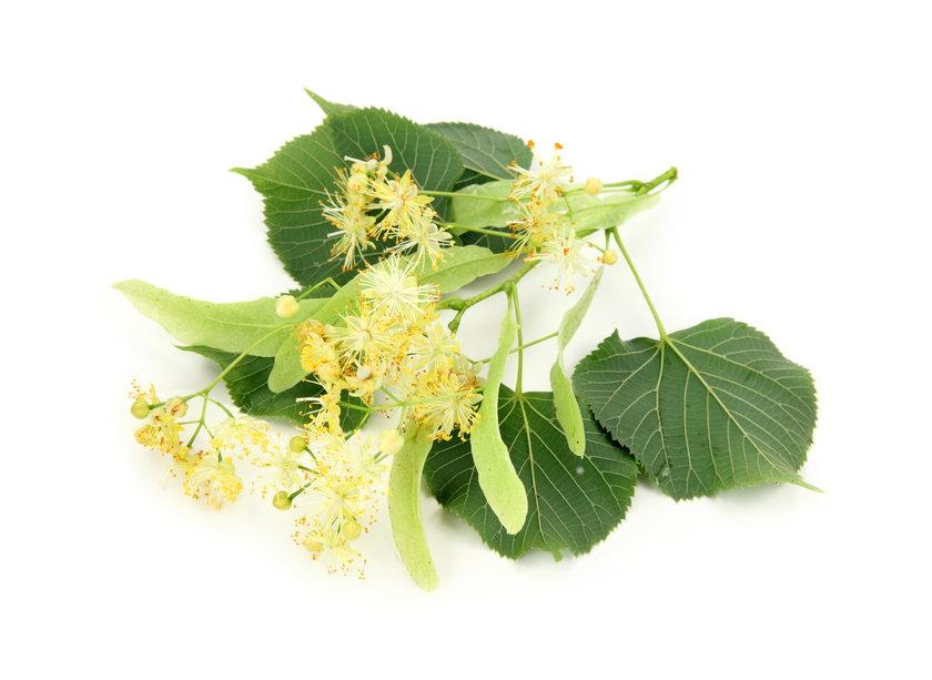 Najzdrowsze zioła