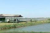 Rusanda, park prirode, sc youtube