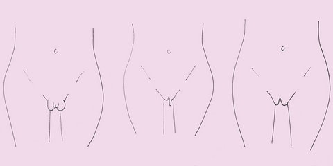 Your labias are the outer and inner lips of your vagina and can vary from person to person [Credit: Cosmopolitan]