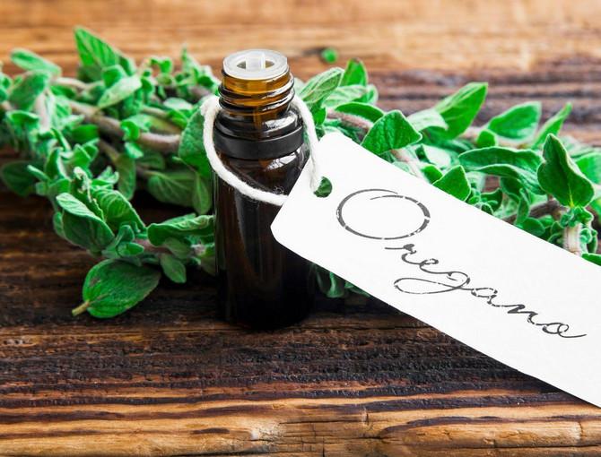 Moćno i efikasno ulje origana