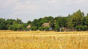 Mazowsze: filmowe szlaki turystyczne