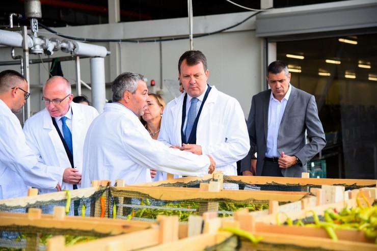 Otvorena fabrika za preradu povrća nemačke kompanije Mamminger konserven - SRB Promo