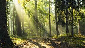 Marian Stój: pogodzić ochronę przyrody z działalnością człowieka