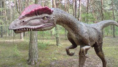 żarty z dinozaurami oprogramowanie do dobierania graczy online Kundli pro