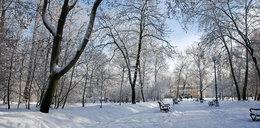 Arcydziwna pogoda tej zimy w Polsce!